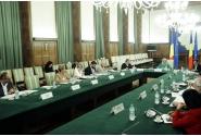Participarea premierului Viorica Dăncilă la Comitetul interministerial dedicat pregătirii Centenarului