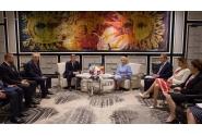 Întrevederea premierului Viorica Dăncilă cu președintele Consiliului de Miniștri din Bosnia și Herțegovina, Denis Zvizdić