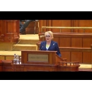 Prime Minister Viorica Dăncilă's speech at the final vote on the drafts of the 2019 state budget law and the 2019 state social security budget in the joint session of the Chamber of Deputies and the Senate