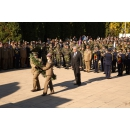 Prime Minister Mihai Tudose's message on the Army Day